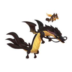 An image of the Coyote Dragon